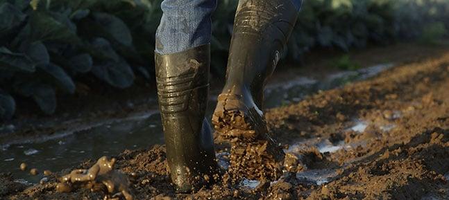 Botas para agricultura en NEOTANE